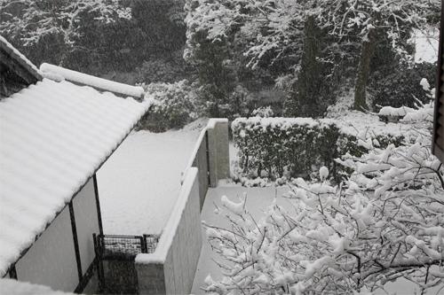 2010-0113大雪2