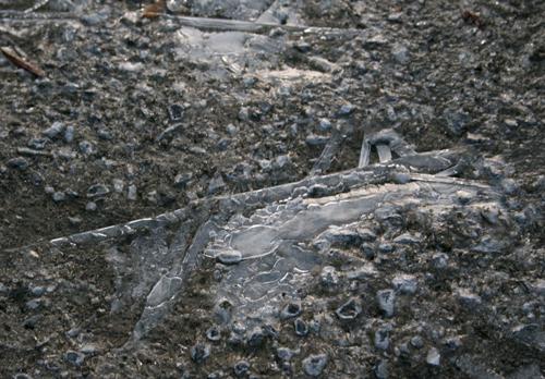 2010-0127氷が張る