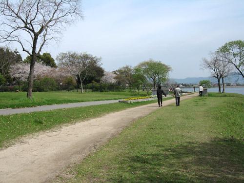 江津湖散歩道