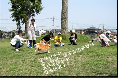 20100506kyogi_01.png