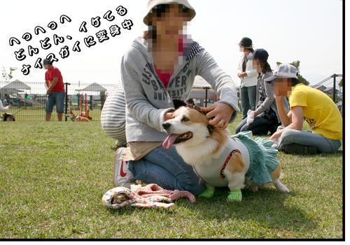 20100506kyogi_03.png