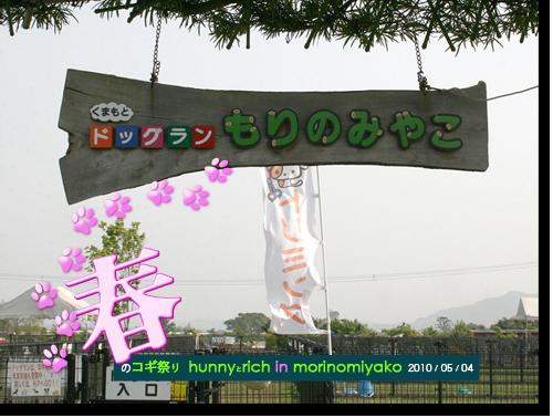 morinomiyako_0.png