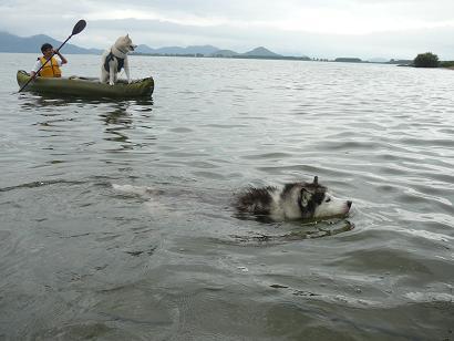 20100704琵琶湖6