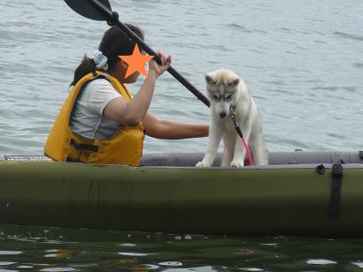 20100704琵琶湖14