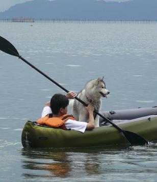 20100704琵琶湖18