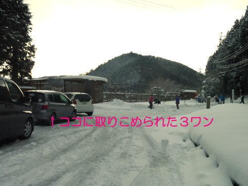 2011013003.jpg