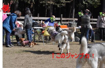 2011031345.jpg
