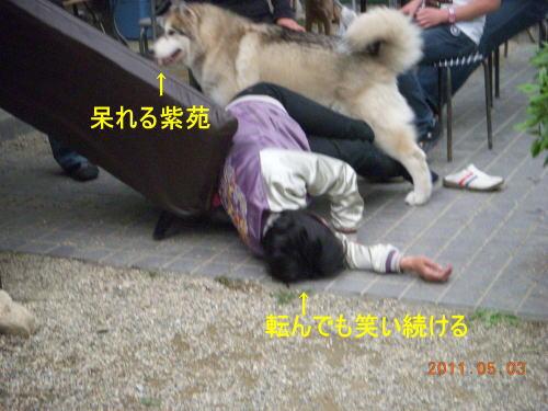 2011050319.jpg