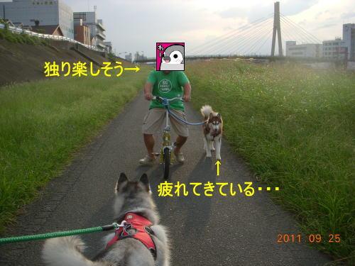 2011092505.jpg
