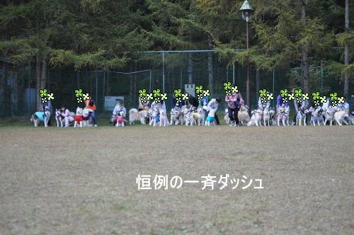 2011100904a.jpg