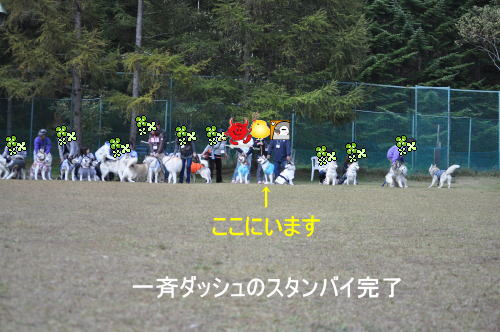 2011100905a.jpg