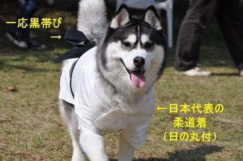 2011100931a.jpg