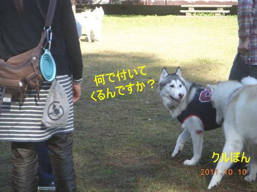 2011101006.jpg