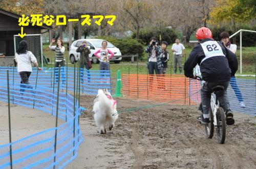 2011110629.jpg
