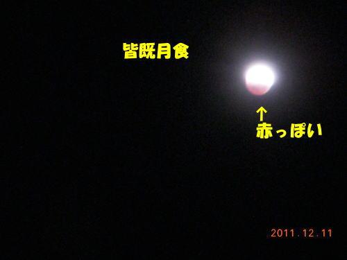 2011121220.jpg