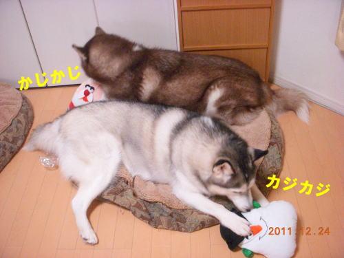 2011122405.jpg