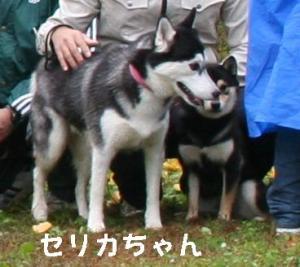 20081116愛知ハスオフ会 032