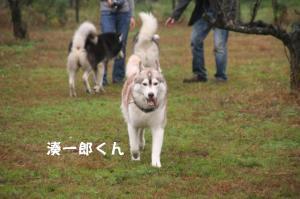 20081116愛知ハスオフ会 014_640