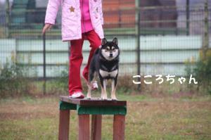 20081116愛知ハスオフ会 079_640