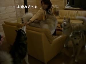 20081122軽井沢 (1)_640 A