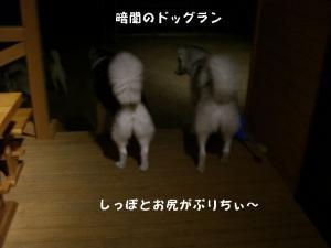 20081122軽井沢 (10)_640 B