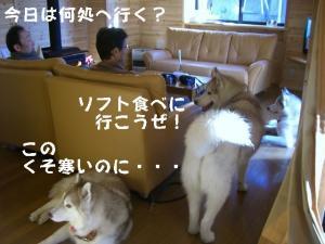 20081122軽井沢 (29)_640 F
