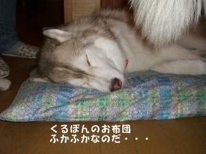 20081122軽井沢 (126)_640 10