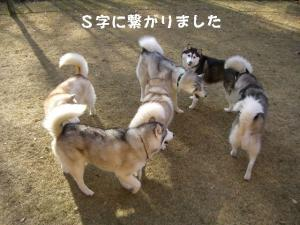 20081122軽井沢 (166)_640 13