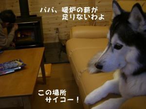 20081122軽井沢 (160)_640 11