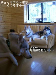 20081122軽井沢 (193)_640 14