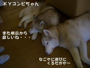 20081122軽井沢 (200)_640 19