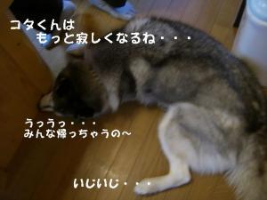20081122軽井沢 (202)_640 20