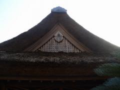 kituki041