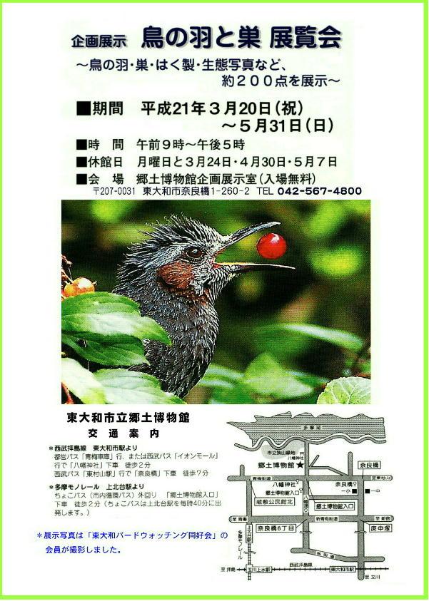 20090304 東大和郷土博物館企画展示「鳥の羽と巣 展覧会」案内はがき
