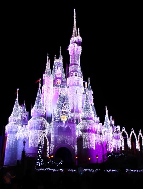 2011/11/25-12/1*WDWレポ ~3日目・2ミッキーのベリーメリークリスマスパーティー~12