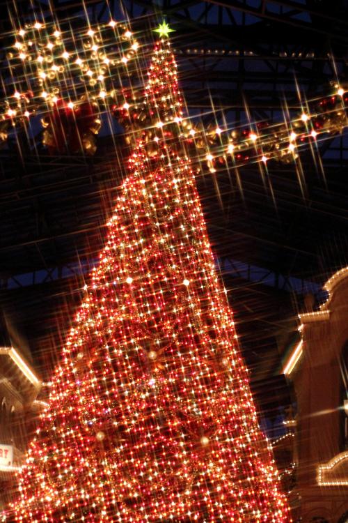 クロスフィルターで撮ったクリスマスの風景☆1