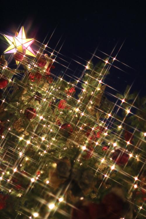 クロスフィルターで撮ったクリスマスの風景☆9