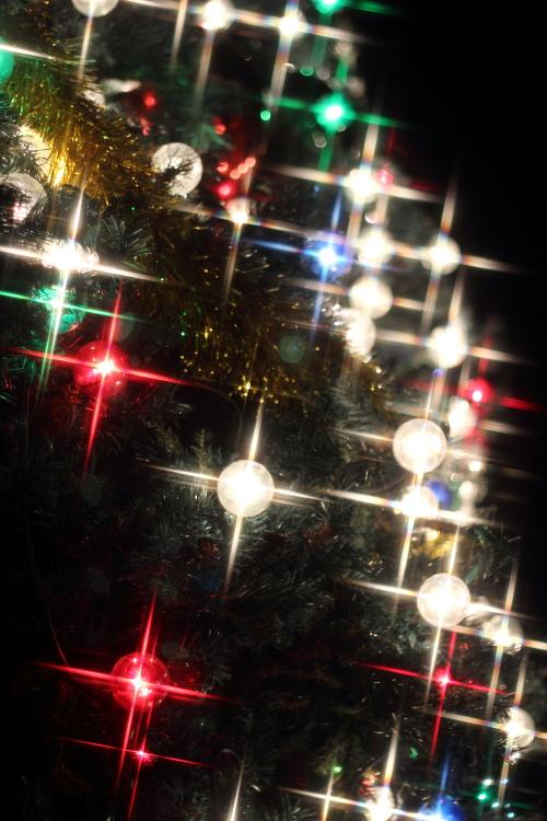 クロスフィルターで撮ったクリスマスの風景☆20