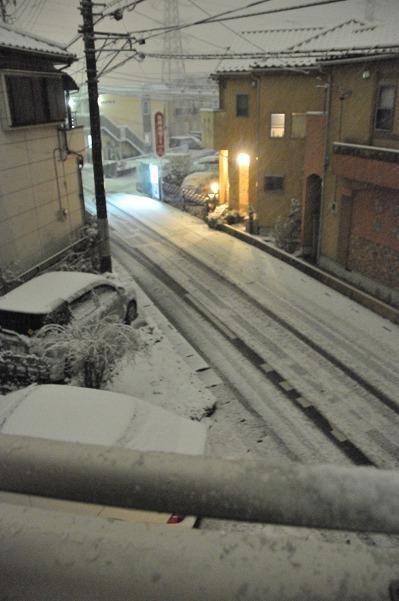 2011.2.14雪なう