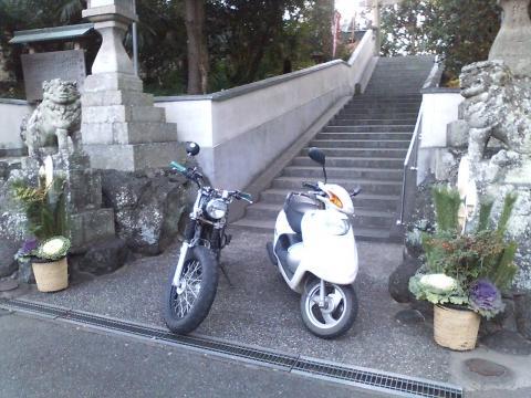 091227門松