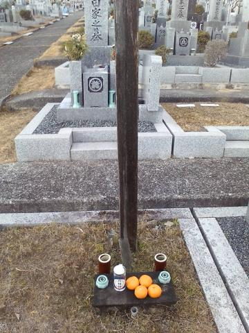 100106墓