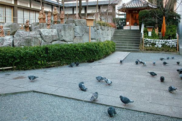 081216rokkakudo002.jpg