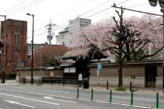 090328arisugawa005.jpg