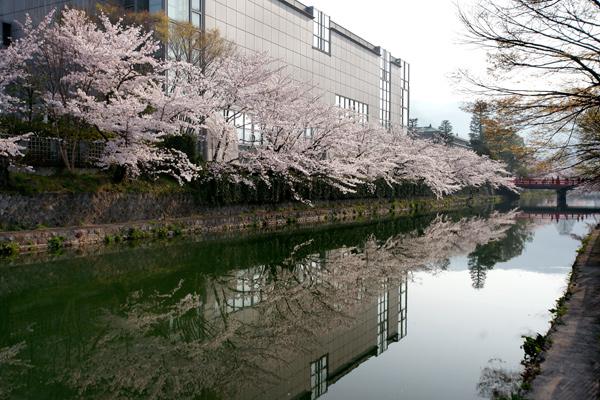 090407okazaki001.jpg