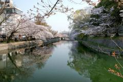 090407okazaki006.jpg