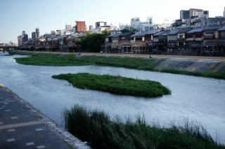 090814kamogawa014.jpg