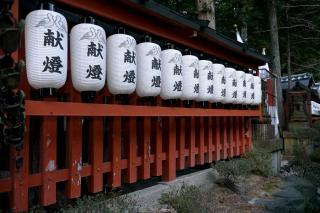 100103miyakehachiman001.jpg
