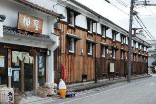 100117yamamotohonke002.jpg