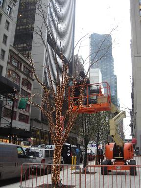 NY.Nov.2008 058
