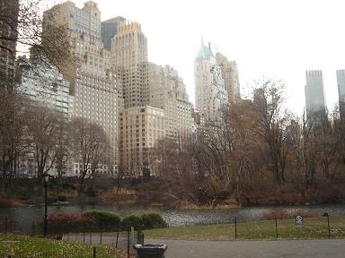 NY.Dec.2008 003